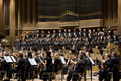 The Slovenian Philharmonic Orchestra